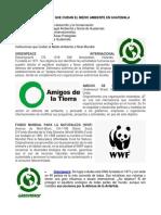 INSTITUCIONES QUE CUIDAN EL MEDIO AMBIENTE EN GUATEMALA.docx