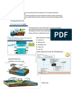 The Biogeochemical Cycle.docx