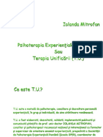 Curs 6 Consilierea si psihoterapia experientiala a unificarii.ppt