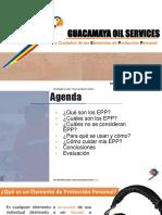 epp GOS FF.pdf