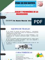 Equipos de Trabajo y Psicodinámica de Las Organizaciones