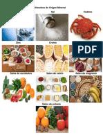 Alimentos de Origen Mineral, Animal y Vegetal.docx