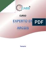 Estructura Del Curso - Experto en ArcGIS