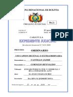 Caratula de Expediente Judicial Doc