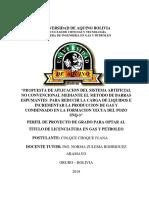 BARRAS DE ESPUMAS JUANA.docx IMPRI.docx