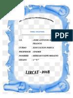 MONOGRAFIA DE VOLEYBOL CCASCCABAMBA.docx