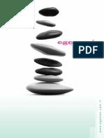 EGEMEN.pdf