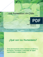 Los humedales en Chile final 3.pdf
