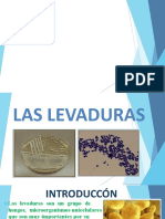 LEVADURAS DIAPO