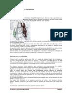 MANUAL INTRODUCCION A LA INGENIERIA(1).docx
