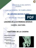 Anatomia Decade Ra