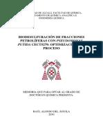 TESIS DOCTORAL RAÚL ALONSO DEL ÁGUILA.pdf
