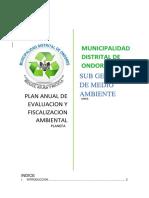 PLANEFA 2020.docx