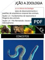 Aula pdf modulo 1.pdf