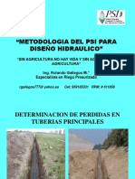 Diseno Hidraulico PSI Ing