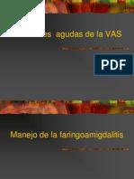 Infecciones Agudas de La VAS HCcas2013