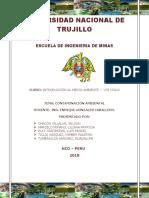 GRUPO 01 - Contaminación del medio ambiente.docx