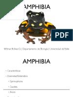clase 1 Anfibios.pdf