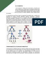 BASE CITOLOGICA DE LA GENETICA.docx