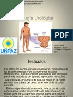 CLASE 11-URO I.pptx