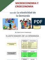 Elasticidad de la Demanda.pptx