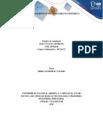fase 2 -GRUPO 301124-71 - daicypalma.docx