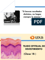1B._Epitelio_de_revestimiento (1)