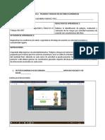 formato_peligros_riesgos_sec_economicos-1.docx