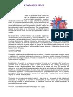 MODULO 8 semiologia.docx