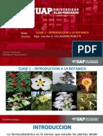2019 - BF - CLASE 1 - INTRODUCCION A LA BOTANICA.ppt