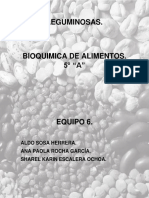 LEGUMINOSAS.docx