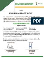Formato Certificado LP Nivel II