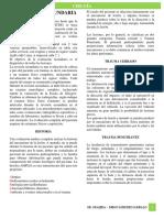4.- Evaluación Secundaria - Dr Grajeda.docx