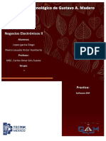 Software ERP.docx