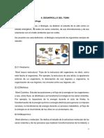 0.1 Balderramo.docx
