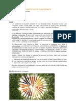 Clasificación Taxonómica de La Huerta
