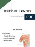 (3) Región del hombro_20190313214733
