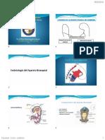 1 Embriologia de La Region Craneo Facial 2019
