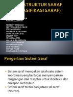 SARAF (STRUKTUR DAN KLASIFIKASI SARAF).pptx