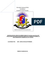 perfil de proyecto artesanal.docx