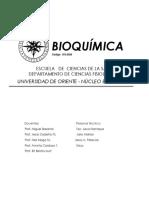 prog boiquimica.pdf