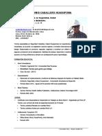 CV - Dennis Caballero H. (Actual)