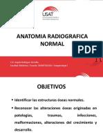 Anatomia Radiografica Normal