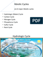 Abiotic Cycles (1).pptx