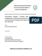 CAP DE ALIMENTACION.docx