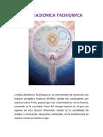 MESA RADIONICA TACHIONYCA.docx