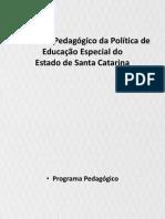 SLIDES Programa Pedagógico Da Política de (1)