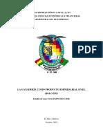 Monografia Expocruz 2018.docx