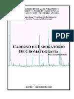 Alexandre Schuler; CADERNO DE LABORATÓRIO DE CROMATOGRAFIA