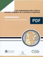 libro_hidroarsenicismo_completo.pdf